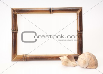 Frame from a bamboo and two shells