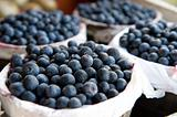 Bushels full of fresh blueberries