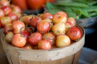 Fresh bushels of Mt. Rainier cherries