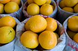 Large oranges at a fresh marketplace