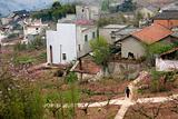 Chinese Peasant Village, Peach Orchard, Crossroads, Sichuan, Chi