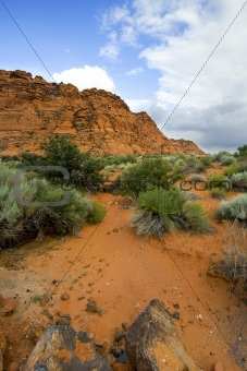 Snow Canyon - Utah