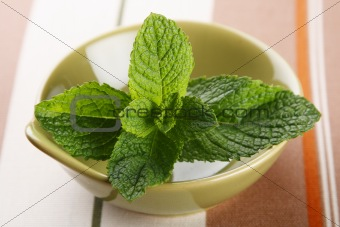 green fresh mint leaves in bowl on tablecloth