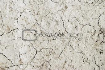 Arid mud