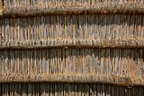 Reed wall background